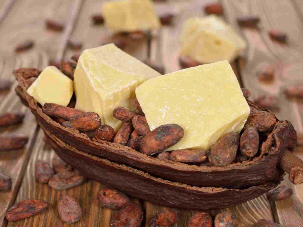 Unt cacao ulei de baza purtator