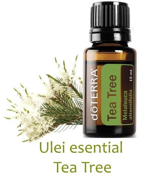 tea tree ulei esential doterra
